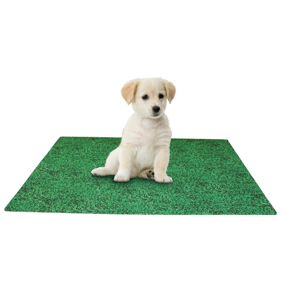 Leak Resistant Washable Puppy Potty  Training Pad, 28 X 36, Green