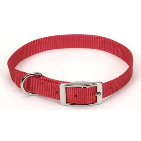 Dog Supplies 401 5/8 Nylon Web Collar (Tough Nylon Web)