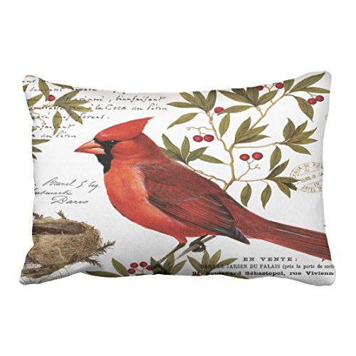 Rylablue Modern Multicolor Vintage Bird Winter Cardinal Handdrawn Painting Polyester 20 X 30 Inch Rectangle Throw Pillow Covers With Hidden Zipper Home Sofa Cushion Decorative Pillowcases Walmart Canada