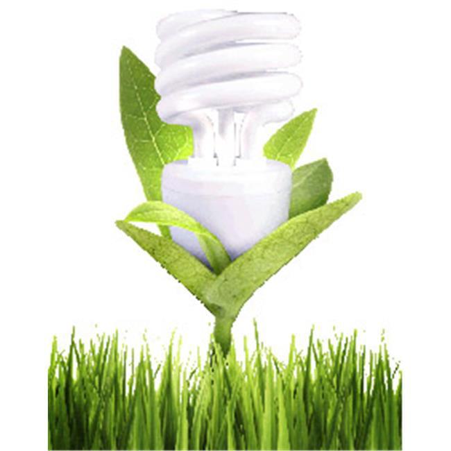 IMTEK Environmental 10004 Sanibulb Air Sanitizer & Air Cleaner CFL Bulb - 15W Cool White Replacement for 60W