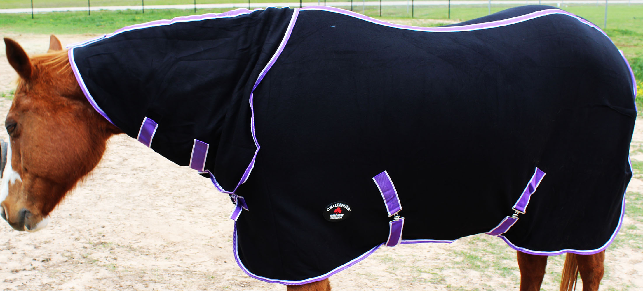 Challenger Horsewear 66 Horse Sheet Polar Fleece Cooler Exercise Blanket Wicks Moisture 4391N