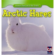 Animals That Live in the Tundra: Arctic Hares (Paperback)