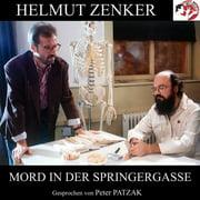 Mord in der Springergasse - Audiobook