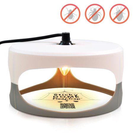 Indoor Plug-in Sticky Flea Trap with Light and Heat Attracter (Includes 2-Adhesive Glue-Boards) / Get Rid of All Fleas, Bed Bugs, Flies, Etc. - For Residential and Commercial Use