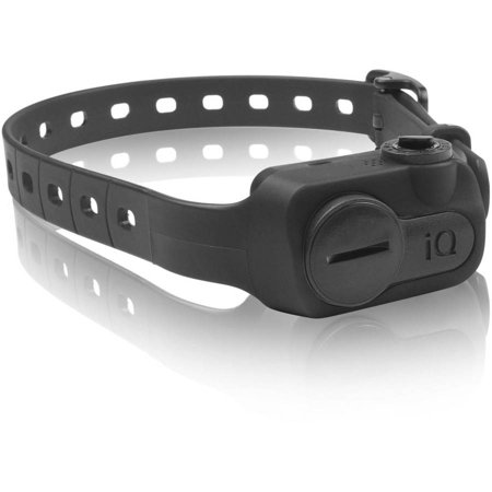 Dogtra Iq No Bark Dog Collar Review