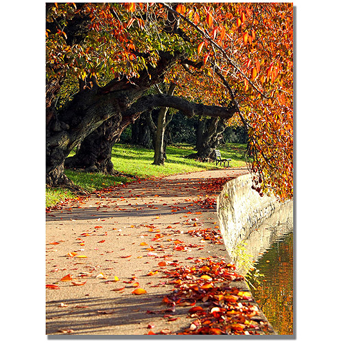 "Trademark Fine Art ""So Quietly"" Canvas Wall Art by MCat"