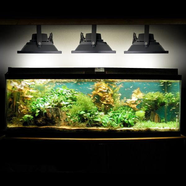KapscoMoto Biltek 100W LED Aquarium Flood Light COOL Whit...
