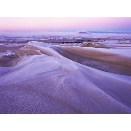 Posterazzi Winter carves and decorates the Umpqua Dunes Oregon Dunes National Recreation Area Lakeside Oregon United States of America Canvas Art - Robert L Potts Design Pics (36 x 26)