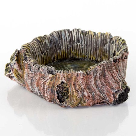 BioBubble Decorative Stump Bowl, Large, 3.75