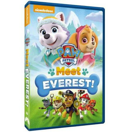 Paw Patrol: Meet Everest! (DVD)](Paw Patrol Halloween Movie)