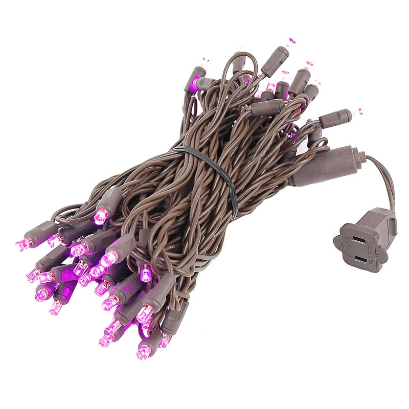 Novelty Lights 50 Light LED Christmas Mini Light Set, Outdoor Lighting Party Patio String Lights, Brown Wire, 25 Feet