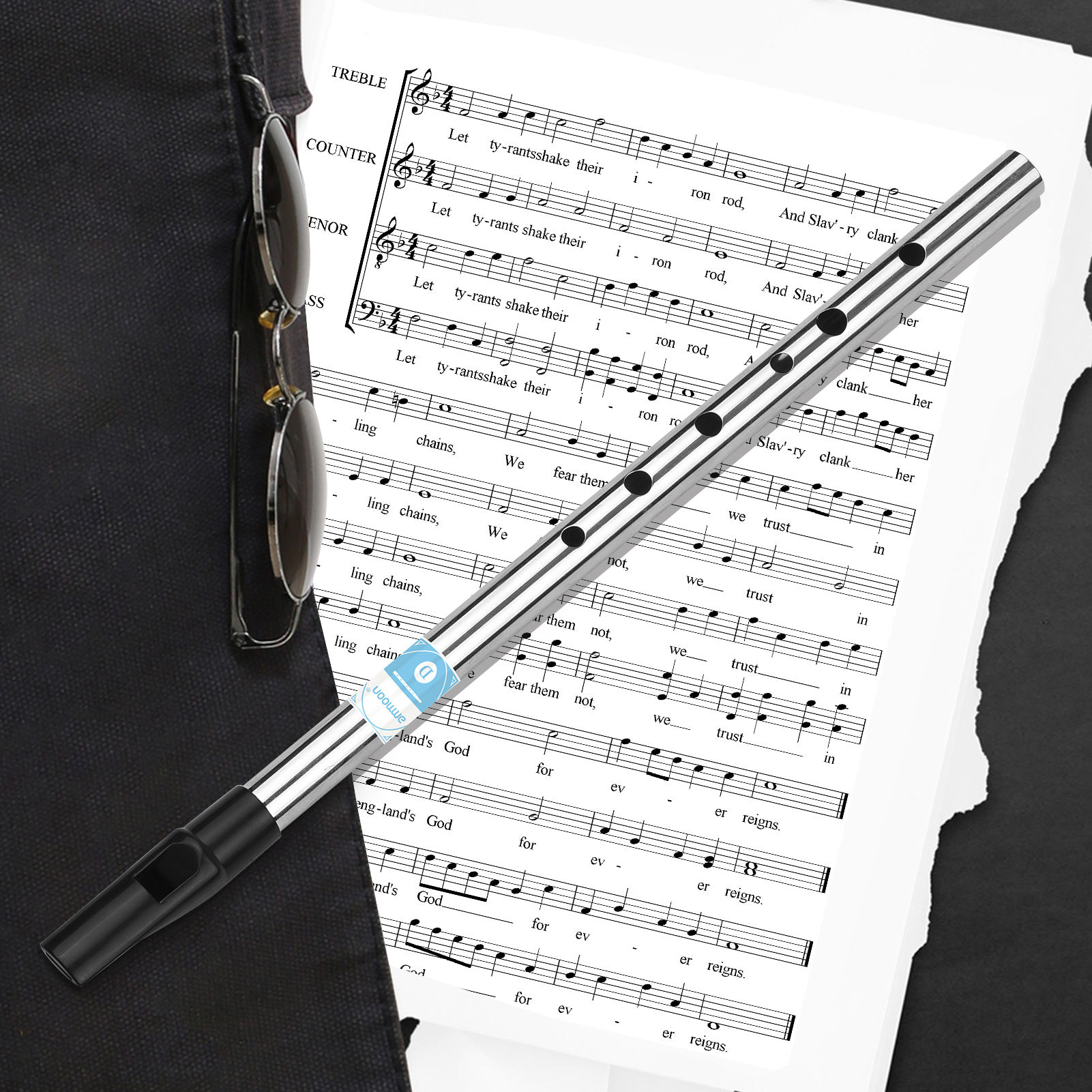 ammoon Irish Whistle Flute 6 Holes Flute Wind Musical Instruments for Beginners Intermediates Experts Key of D, Silver
