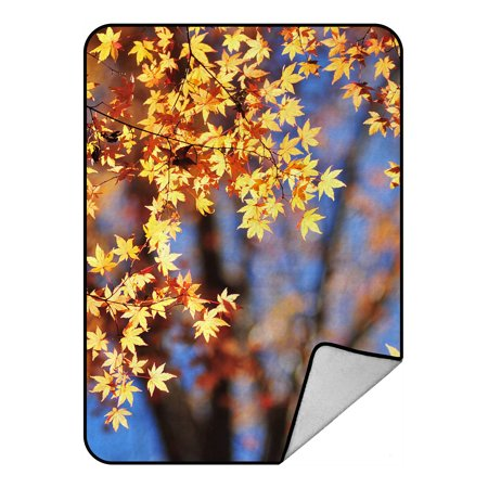 - YKCG Autumn Maple Leaves Fall Prime Blanket Crystal Velvet Front and Lambswool Sherpa Fleece Back Throw Blanket 58x80inches