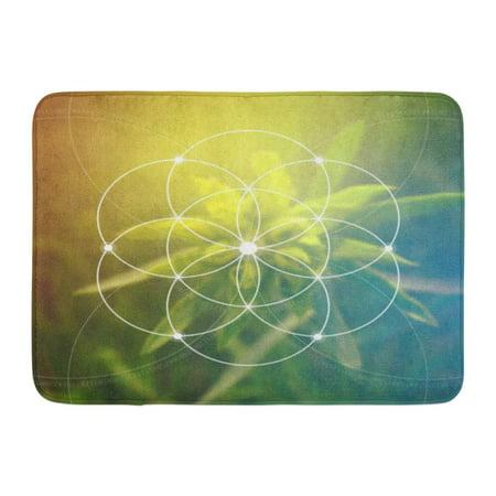 GODPOK Science Flower of Life The Interlocking Circles Ancient Symbol Sacred Geometry Mathematics Nature Rug Doormat Bath Mat 23.6x15.7 inch