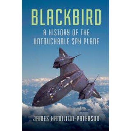 Blackbird: A History of the Untouchable Spy Plane - eBook