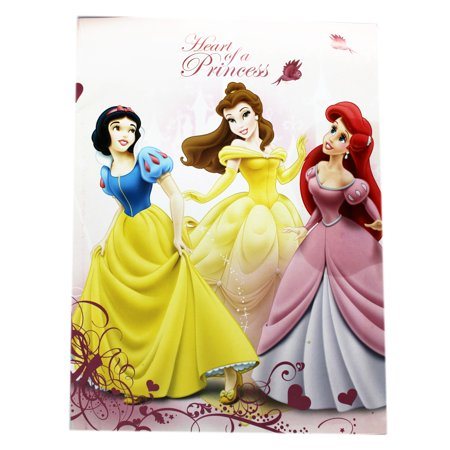 Disney Princess Heart of a Princess Light Pink Cover Drawing