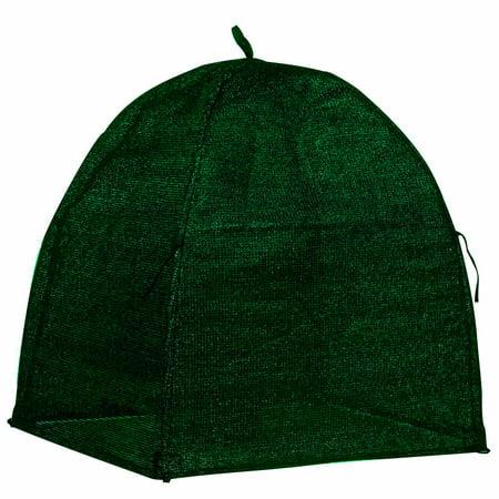 Nuvue Hunter Green Winter Shrub - Shrub Cover
