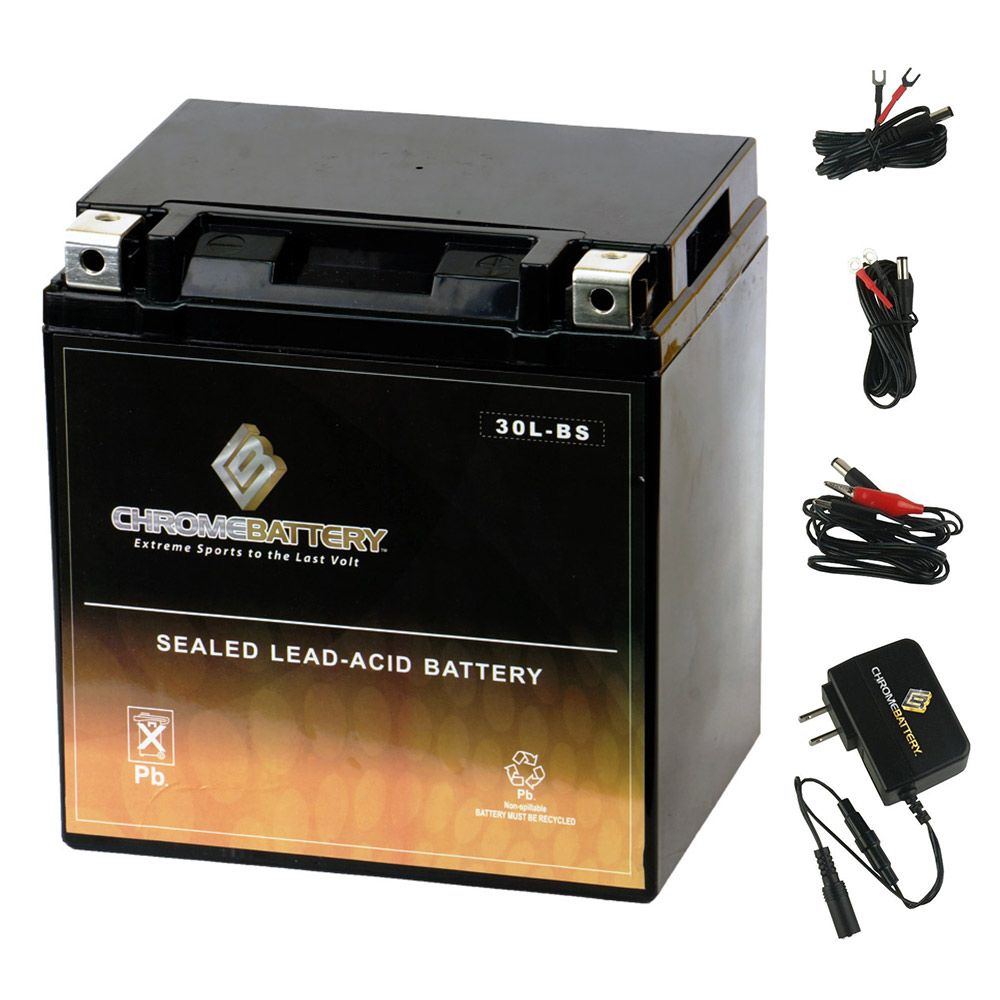YIX30L-BS Battery with 0.5 Amp Charger - Bundle of 2 items
