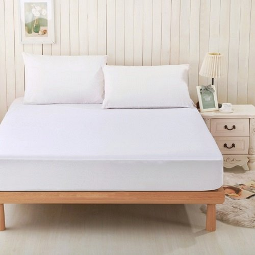 Alwyn Home Viscose Rayon from Bamboo Terry Hypoallergenic Waterproof Mattress Protector