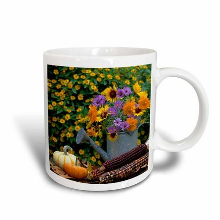 3dRose Autumn display of flowers in watering can, gourds, pumpkins, corn. - Ceramic Mug, 15-ounce](Gourd Pumpkin)