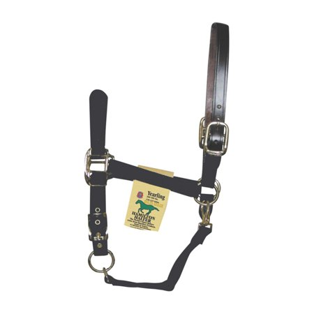 Hamilton Leather Halter (Hamilton Halter Company Adjustable Halter with Leather)