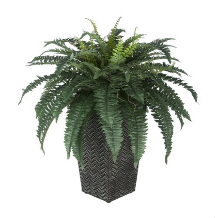 House of silk flowers inc artificial fern floor plant in planter house of silk flowers inc artificial fern floor plant in planter mightylinksfo