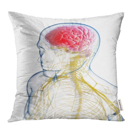 USART Brain 3D Rendered of the Head Headache Human Migraine Rebound Sinus Inflamed Pain Pillowcase Cushion Cover 18x18 inch