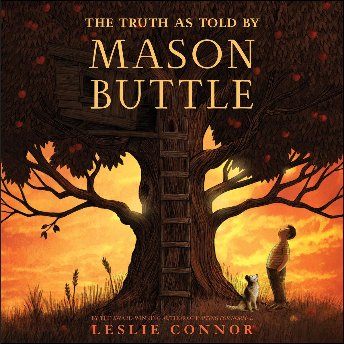 The Truth as Told by Mason Buttle - Audiobook