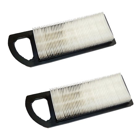 Briggs and Stratton 2 Pack of Genuine OEM Replacement Filters # 794422-2PK - image 1 of 1