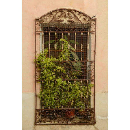 LAMINATED POSTER Iron Plant Fence Window Window Sill Wrought Iron Poster Print 24 x 36