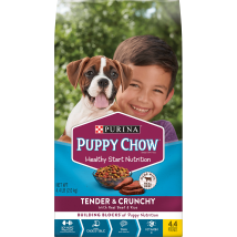 Purina Puppy Chow Tender & Crunchy