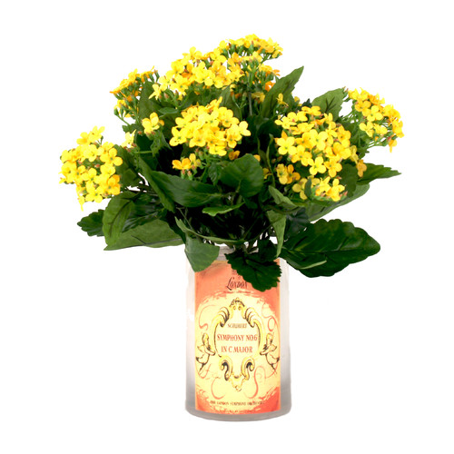 Creative Displays, Inc. Spring Additions Kalanchoe Decoupage Vase