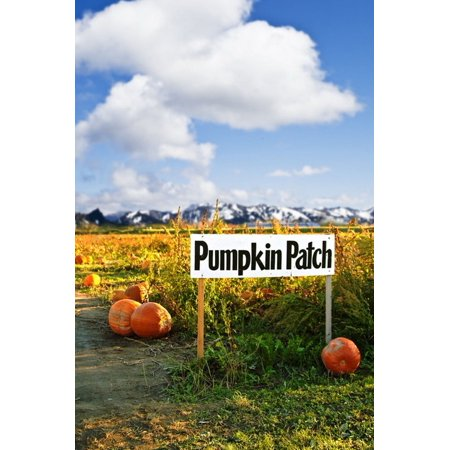 GreenDecor Polyster 5x7ft Halloween Theme Pumpkin Patch Sign on Farm Photography Backdrops Indoor Studio Backgrounds Photo Props](Cute Halloween Themed Backgrounds)