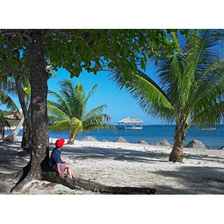 Tourist resting under palm trees on beach at Palmetto Bay Roatan Island Honduras Poster Print by Tim Fitzharris