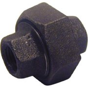 Pannext Fittings B-UNI12 Black Union - 1.25 in.