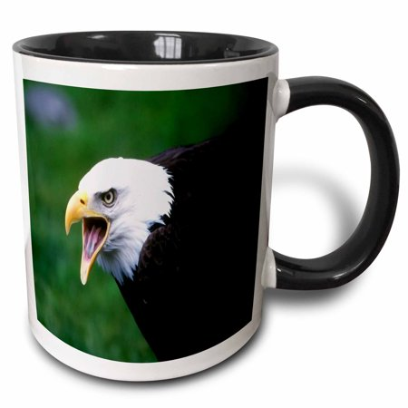 3dRose Screaming Eagle, Two Tone Black Mug, 11oz Black Screamin Eagle