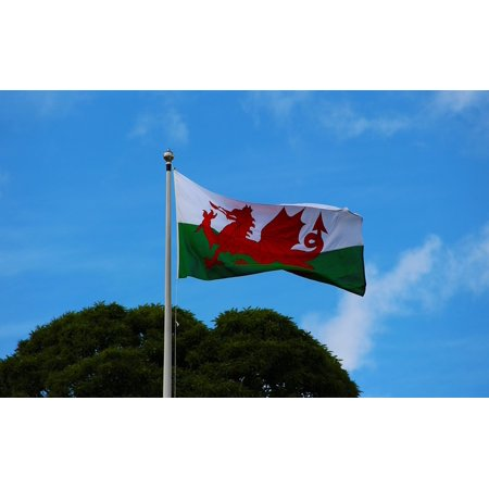 Framed Art for Your Wall Nation Banner Pennant Welsh Wales Welsh Flag Flag 10x13