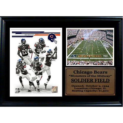 NFL Chicago Bears Photo Stat Frame, 12x18