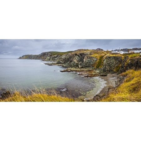 Rugged Atlantic coastline with golden fields and a cloudy sky; Newfoundland, Canada Poster Print by Susan Dykstra / Design Pics