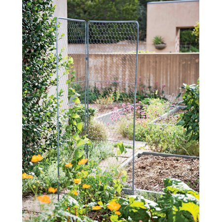 Two-Panel Chicken Wire Trellis ()