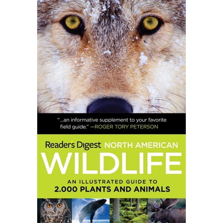 North American Wildlife : An Illustrated Guide to 2,000 Plants and Animals (Animal And Plant)