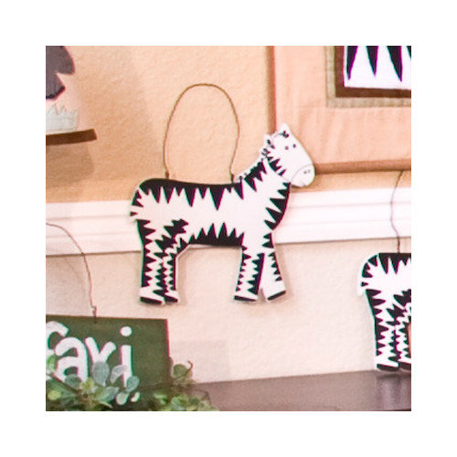 Brandee Danielle On Safari Zebra Hanging Art