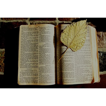 Canvas Print Book Faith Dried Leaf Christian Bible Bookmark Stretched Canvas 10 x 14