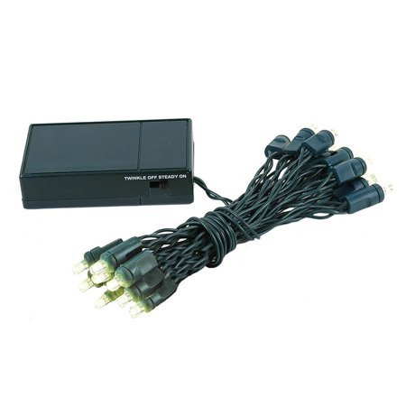 20 Mini Light (Novelty Lights 20 Light Battery Operated LED Christmas Mini Light Set, Green Wire, 8' Long )