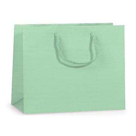 2 Unit Aqua Matte Medium Gift Bags Mini Pk 13x5x10