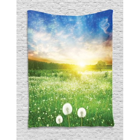 Wall Cloud Images (Spring Tapestry, Dandelion Flower Field Meadow Rural Grass Vivid Sunset Clouds Idyllic Image, Wall Hanging for Bedroom Living Room Dorm Decor, Lime Green Blue, by Ambesonne )