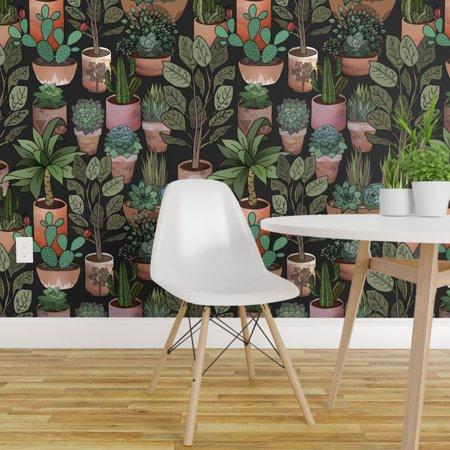 Peel and Stick Removable Wallpaper Desert Modernism Southwestern Boho