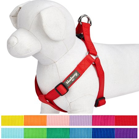 Blueberry Pet Step-in Classic Dog Harness, Chest Girth 26