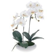 Red Vanilla White/ Yellow Silk Phalaenopsis Orchid Centerpiece with Black Ceramic Base