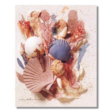 Ocean Starfish Sea Shell Beach Bathroom # 5 Wall Picture 8x10 Art Print - Starfish Wall Art